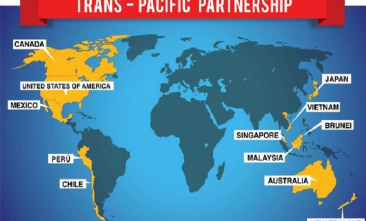 Trans-Pacific Partnership challenges emerging markets