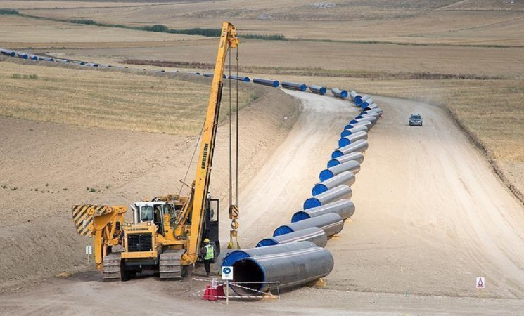 TurkStream to hit Turkish shore in May: Project head